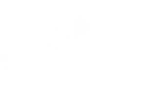 DHMK Dit Hjertes Motionsklub logo