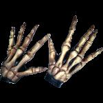 Skelet hænder - shop - webshop